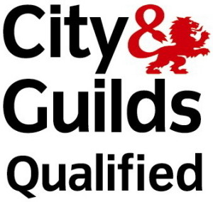 Fully qualified carpenter Guildford